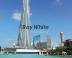 raywhite_1086_img_9.jpg