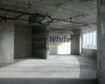 raywhite_1090_img_10.jpg